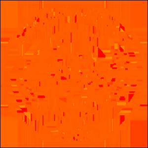 Ballfreunde Bergeborbeck